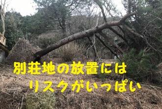 akiya7.jpg